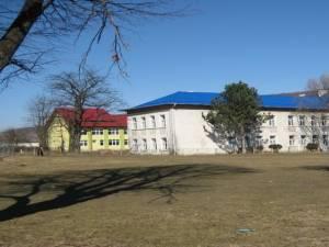 Școala Pătrăuți a organizat o conferință internațională online