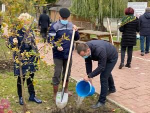 Startul acțiunii de plantare a fost dat în zona de agrement Tătărași, unde au fost plantați 360 de copaci - stejari, plopi, salcâmi