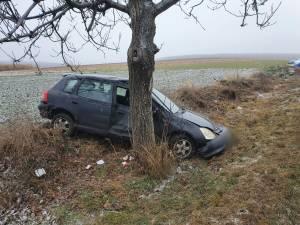 Soferul a pierdut controlul masinii, care s-a izbit violent de un arbore