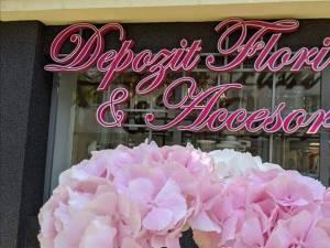 Oferte speciale la Depozitul de flori și accesorii din cartierul Obcini