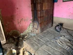 Locuința insalubră în care femeia trăia alături de 14 câini și trei pisici