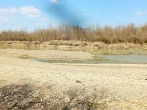 O balastieră din Frătăuții Vechi a fost amendată de comisarii Gărzii de Mediu Suceava