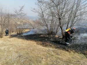 Multe incendii de vegetație, pe 28 de hectare, în ziua de marți