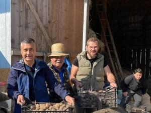 La pus cartofi în Botoşana  FOTO Facebook David Saranga