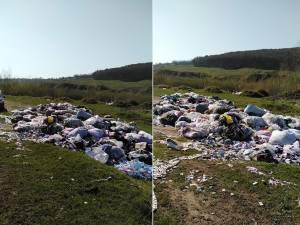 Tone de gunoi aruncate între Pătrăuți și Dărmănești