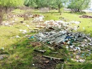 Deșeuri găsite în proximitatea șoselei de centură a municipiului Rădăuți