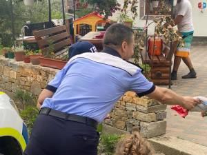 micul politist