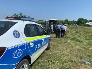 Hoții de fier vechi au abandonat trei cai pe un câmp din Suceava