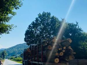 Vehiculul greu cu lemne care depășeau lungimea maximă admisă
