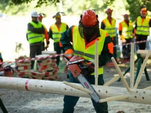 Județul Suceava a obținut un loc fruntaș la competiția profesională a muncitorilor din silvicultură, care a avut loc la Iași