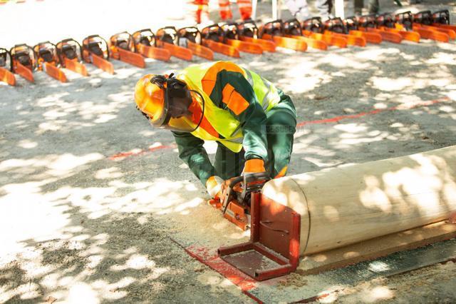 Suceava a obținut locul III pe țară la competiția muncitorilor din silvicultură
