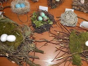 """70 de cuiburi și tot atâtea tipuri de ouă de la păsări sedentare și migratoare, în expoziția temporară """"Cuibușor de nebunii"""""""