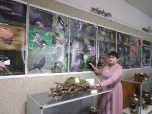 Biologul dr. Florentina-Carmen Oleniuc, de la Muzeul de Științele Naturii Suceava