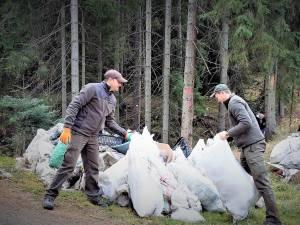 Campanie de ecologizare în pădurile Sucevei, sâmbătă, 25 septembrie
