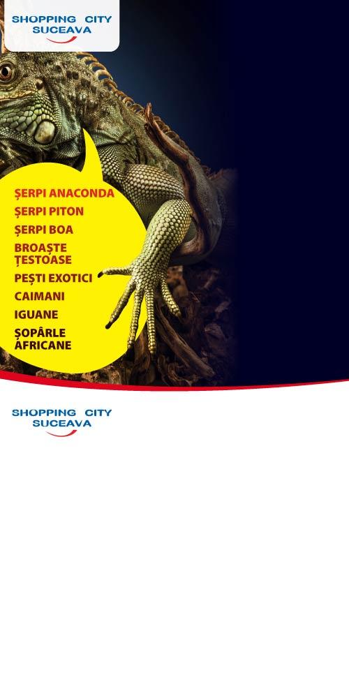 SHOPPING CITY SUCEAVA - Expozitie de reptile vii