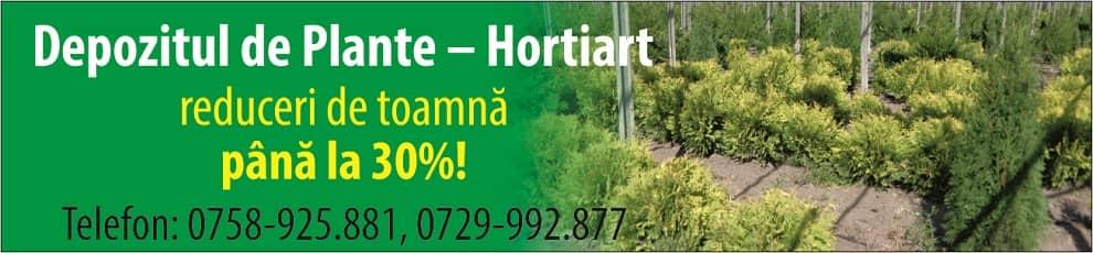 Depozitul de plante - Hortiart