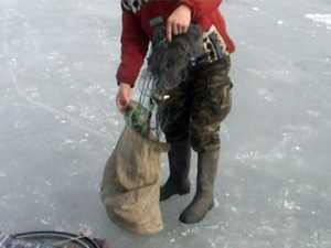 Filmaţi de jandarmi în timp ce întindeau plasele pentru a bracona peşte