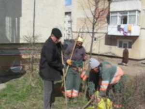 Campania de curăţenie a început din Obcini