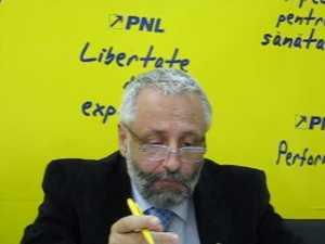 """PNL: """"PD-L vrea să inducă un regim de teroare şi dictatură"""""""