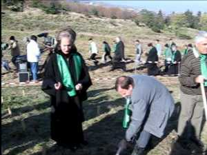 Basescu la actiunea de impadurire a 5 ha de teren