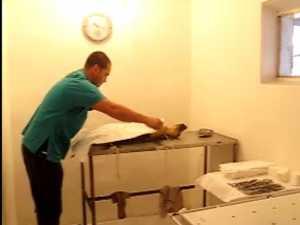 Campanie de sterlizare gratuita a cainilor vagabonzi