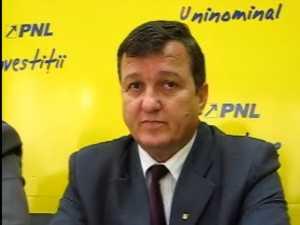 Mocanu crede ca dupa alegerile prezidentiale PD-L va redeveni PD