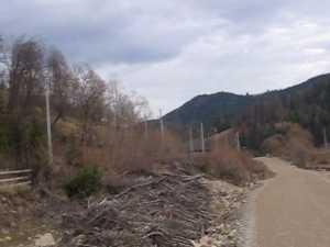Linie ferată de 25 kilometri, lăsată în paragină şi furată pe bucăţi