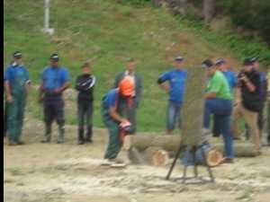Festivalul taietorilor de lemne