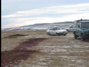 Au aruncat pe camp mizeriile din abator, desi au incasat amenzi de 80.000 de lei