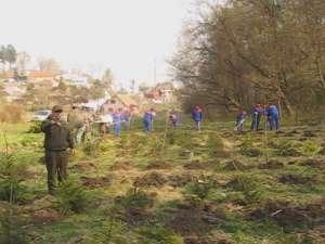 Parcul dendrologic Şipote, îmbogăţit cu 250 de noi arbori