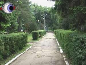 Parcul de la Universitate intră în modernizare
