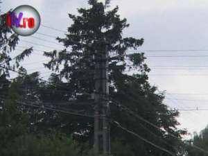 Un sfert dintre locuitorii comunei Siminicea, de patru zile fără curent electric