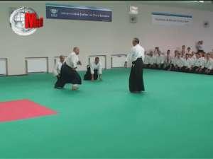 Artă şi măiestrie la demonstraţia de Aikido