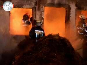 Pagube mari la două ferme de animale lovite de incendii
