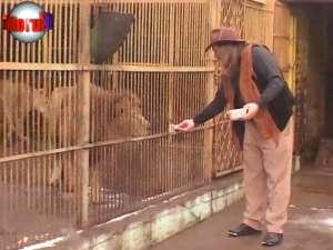 """Autorităţile, sesizate că din judeţ se vând lei şi crocodili ca """"animale de companie"""""""