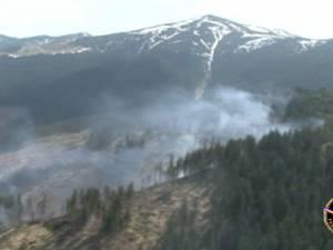 Film al pompierilor, de la incendiul care a distrus 50 de hectare de pădure