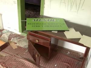 """Vandalism extrem în Rezervaţia floristică """"Fâneţele seculare de la Ponoare"""""""