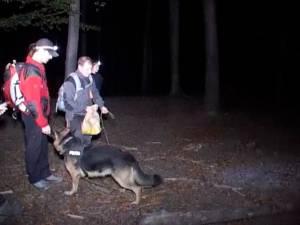 Zeci de oameni, mobilizaţi pentru găsirea unui bărbat rătăcit noaptea în pădure