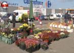 """Aproape 50 de producători din ţară, prezenţi pentru trei zile la """"Serbările Toamnei Bucovinene"""""""