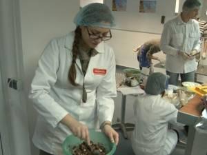 Studenţi şi masteranzi ai Facultăţii de Inginerie Alimentară, cofetari în scop caritabil