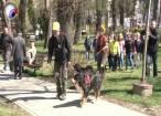 Demonstraţii cu câini pregătiţi pentru misiuni de salvare, pentru elevii Şcolii Nr. 4 Suceava