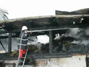 Ferma de animale a Grupului Şcolar Bivolărie, distrusă de un incendiu
