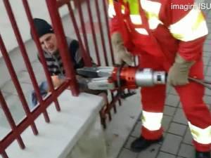 """Un câine un pic prea gras le-a """"mulţumit din mers"""" pompierilor care l-au eliberat dintr-un gard"""