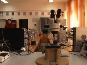 Laboratoare ale Universităţii din Suceava, dotate cu echipamente performante, de sute de mii de euro