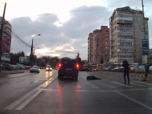 Imagini şocante, cu o minoră accidentată pe trecerea de pietoni, pe Calea Obcinilor