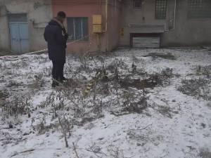 Un angajat al Tribunalului Suceava s-a prăbuşit în gol de la etajul şapte al blocului în care locuia
