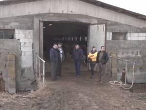 Crescători de vaci care au livrat lapte pe care nu au primit bani, ameninţaţi cu judecata de firma datoare