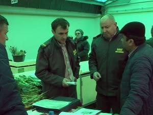 De 8 Martie, florarii din pieţe au fost luaţi la puricat de inspectorii ANAF