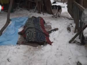Moarte cruntă pentru un bătrân, după ce patul în care dormea a luat foc