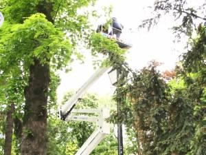 """""""Operaţiunea Cioara"""" a început în parcuri și printre blocurile din Suceava"""